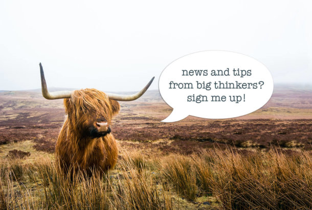 Opt in to bigthingkers newsletter